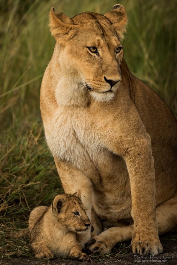 Kenya16-0623