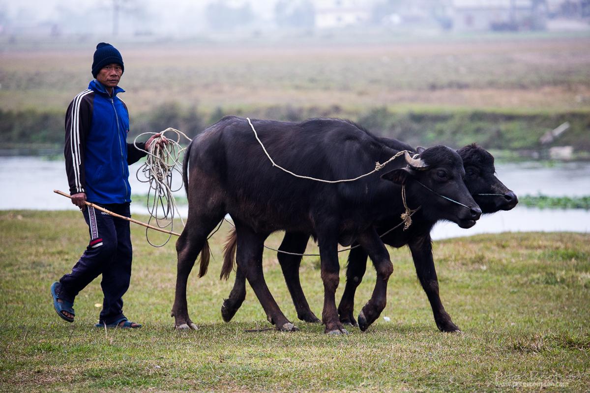 Nepal14-0789