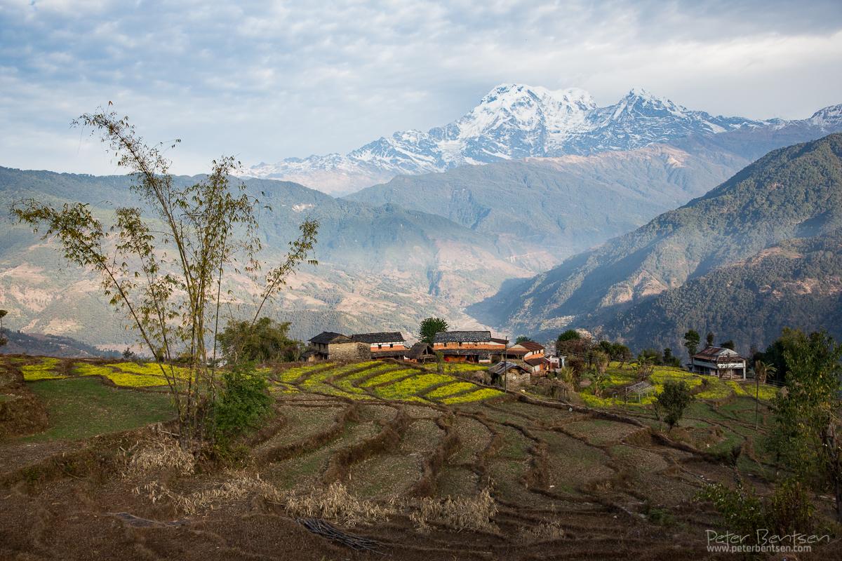 Nepal14-3008