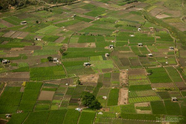Nepal16-1460